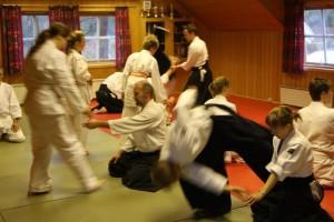 Fokus på aikido