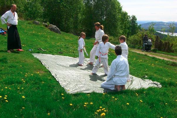 Aikido i det grønne