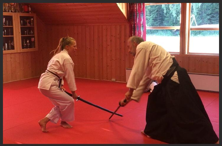 Aikido 2019